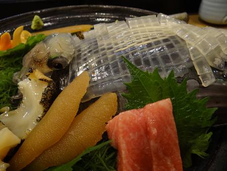 函館泳ぐ烏賊